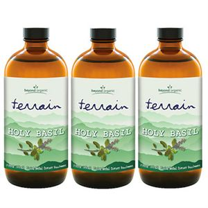Picture of Terrain Holy Basil (3 Pack)